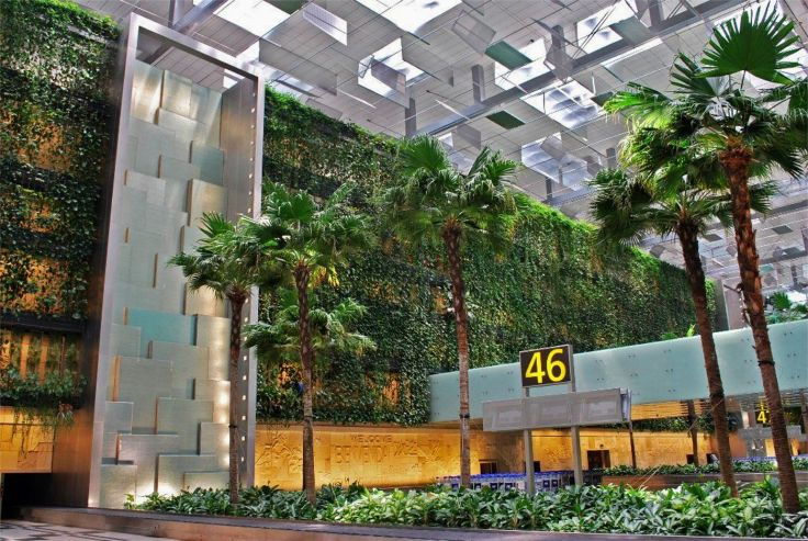 changi_terminal3_greenwall7