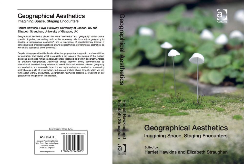 The cover of the book, with the cover image provided by a Royal Holloway University of London artist/scholar.